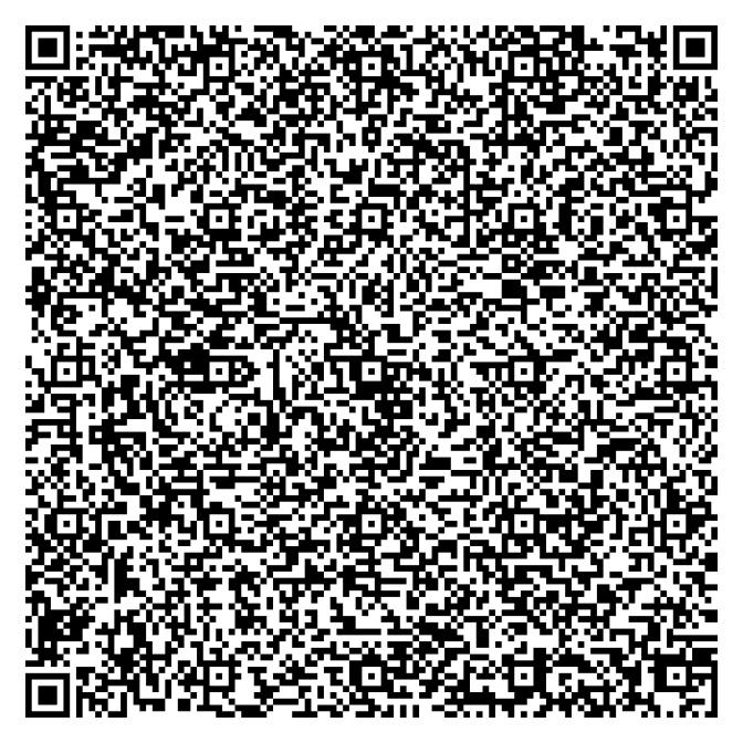 qr-code-03-01-2009_21.10.04